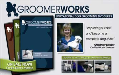 dog grooming instructions techniques tips and how to
